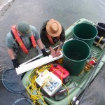 electric fishing survey