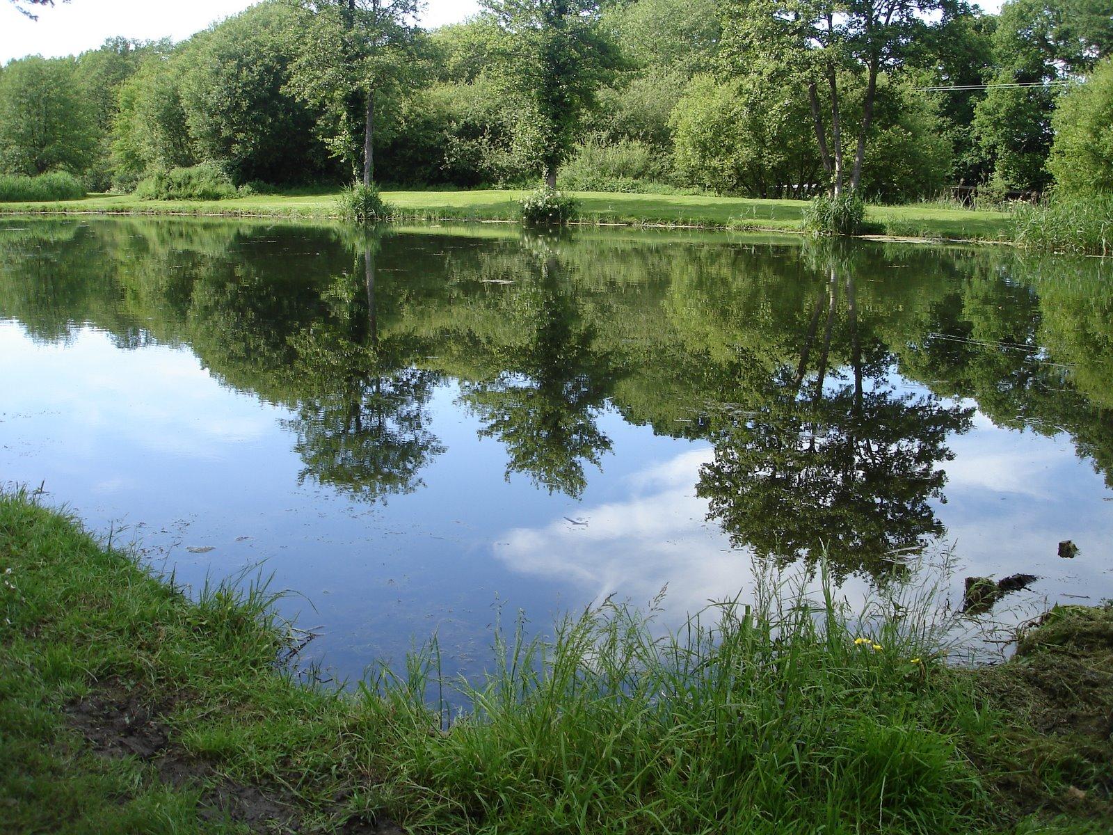 Ponds Lakes Casterbridge Fisheries Ltd