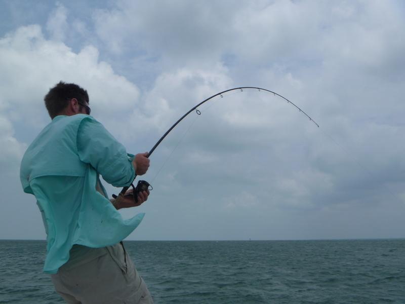 Hookup Co Member Uk Many Fish