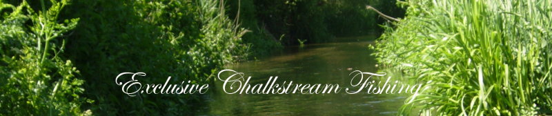 Chalkstream Fishing (day tickets)