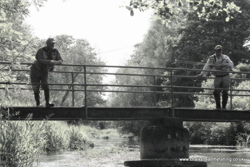 Sheep bridge