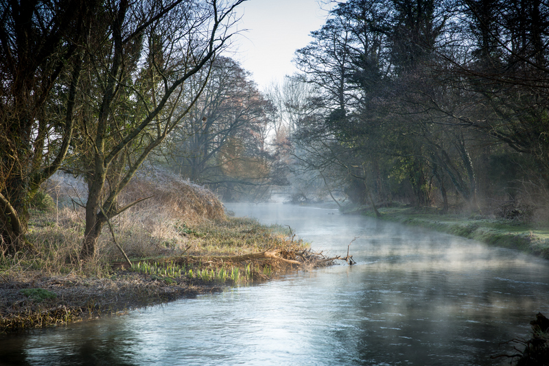 Frome mist-2