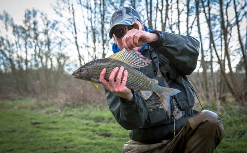 Grayling Frome 3
