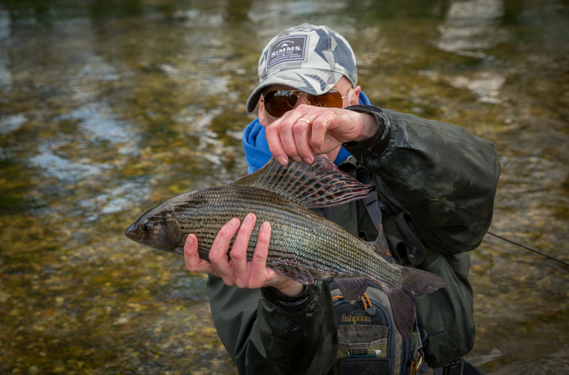 Grayling Frome5