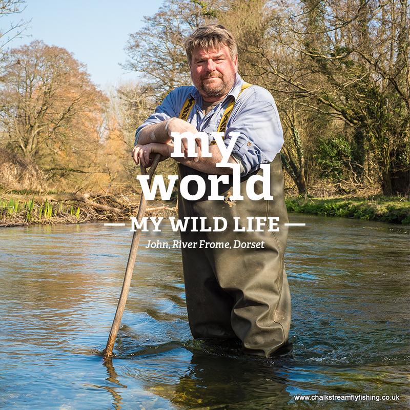 John - My World